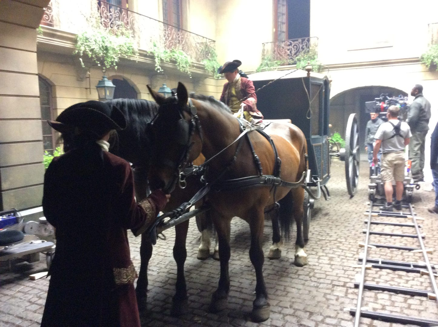 horse in court IMG_2752